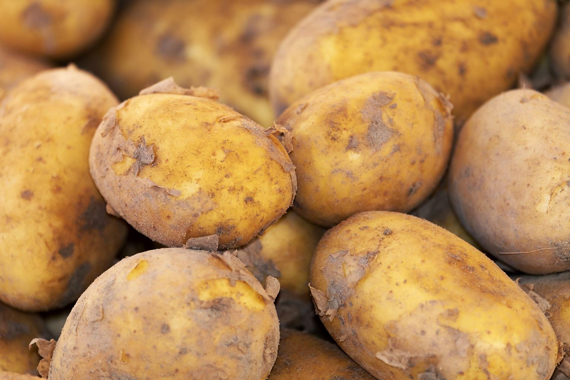 Lob der Kartoffel: Kneipp – ein Kartoffelfan der ersten Stunde… zum Blog