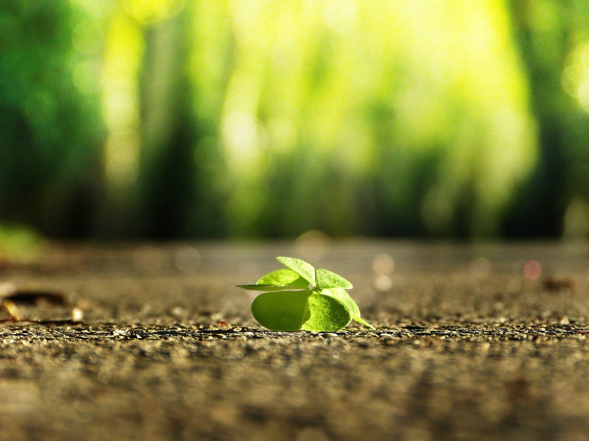 Von Wohlfühlmomenten und Lebenssinn | Blog Beitrag zu: Was ist Glück?
